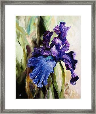 Iris In Bloom 2 Framed Print