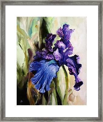 Iris In Bloom Framed Print