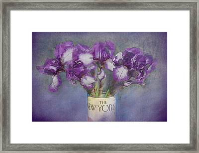 Iris In The New Yorker Framed Print by Jeff Burgess