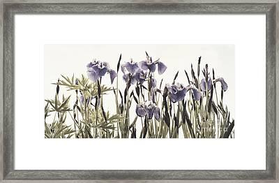 Iris In The Park Framed Print by Priska Wettstein