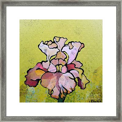 Iris Iv Framed Print by Shadia Derbyshire