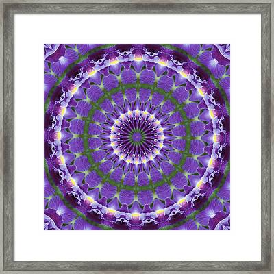 Framed Print featuring the photograph Iris Kaleidoscope  by Denise Beverly