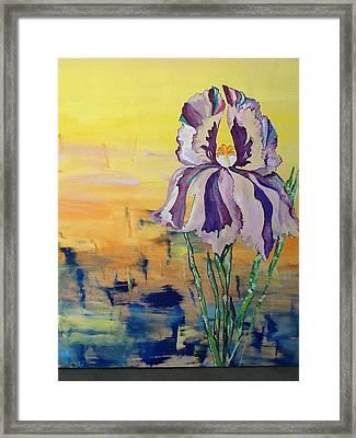 Iris Framed Print by Karen Carnow