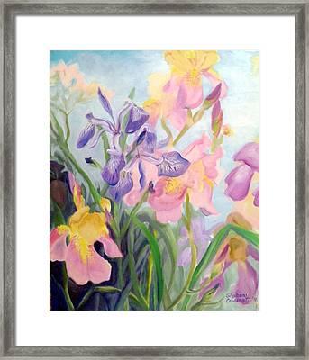 Iris Medley Framed Print