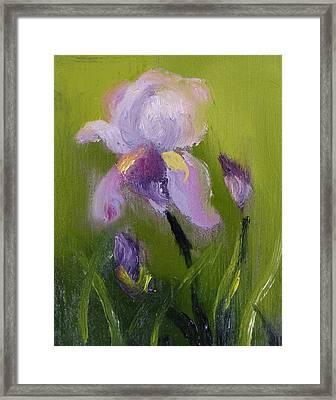 Iris Miniature Framed Print