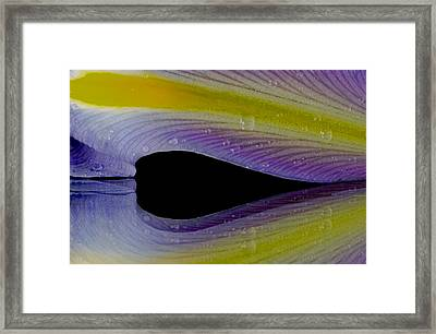 Iris Petal Reflected Framed Print