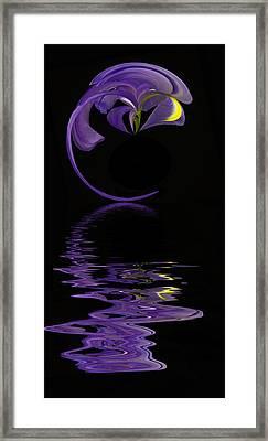 Iris Reflected Framed Print by Cyndy Doty