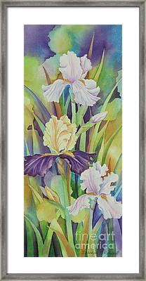 Iris Serenade Framed Print by Deborah Ronglien
