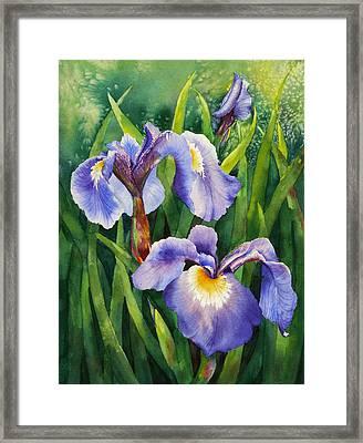 Framed Print featuring the painting Iris Setosa Alaska by Karen Mattson