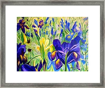 Iris Spring Framed Print