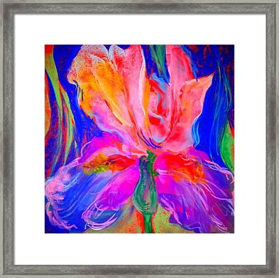 Funky Iris Flower Framed Print
