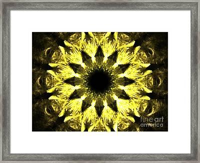 Iris Sun Framed Print by Kim Sy Ok