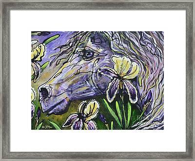 Iris Upon A Star Framed Print