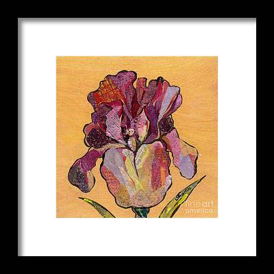 Irises Framed Prints