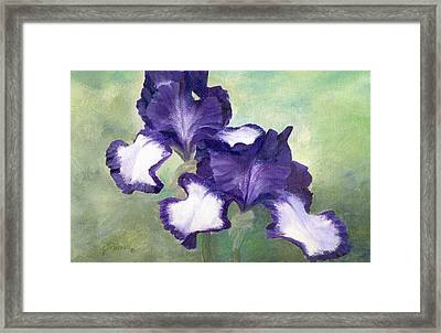 Irises Duet In Purple Flowers Colorful Original Painting Garden Iris Flowers Floral K. Joann Russell Framed Print
