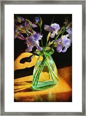 Irises In Morning Light Framed Print by Michelle Calkins