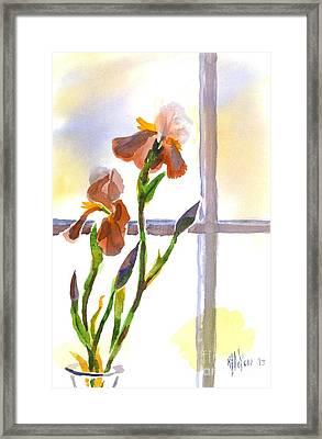 Irises In The Window Framed Print by Kip DeVore