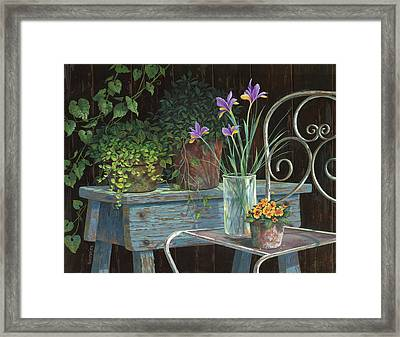 Irises Framed Print by Michael Humphries