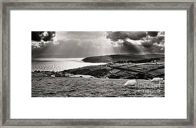 Irish Sea And Coast Framed Print by Thomas R Fletcher