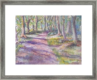 Irish Woods Framed Print