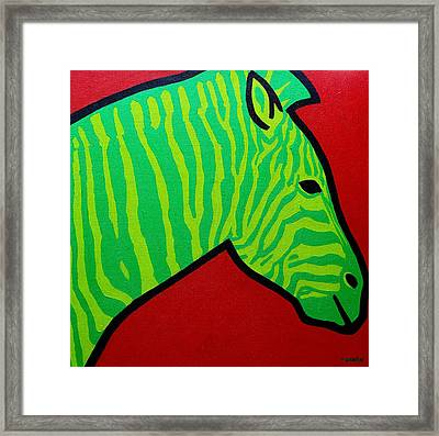 Irish Zebra Framed Print