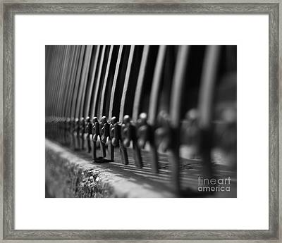 Iron Blooms Framed Print