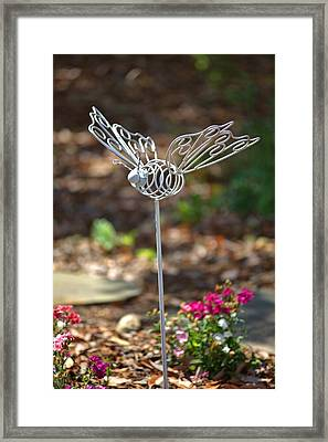 Iron Butterfly Framed Print by Gordon Elwell