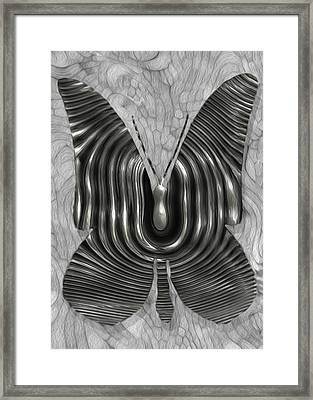 Iron Butterfly Framed Print by Jack Zulli