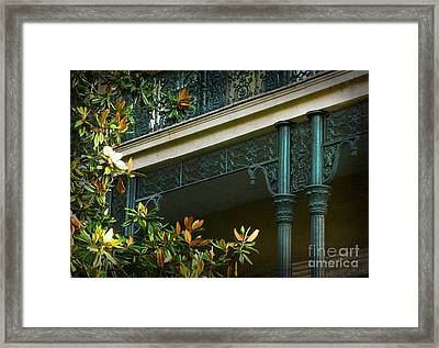 Iron Detail With Magnolia Tree Framed Print by Jeanne  Woods