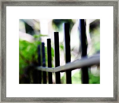 Iron Fence No 2 Landscape Nature Still Life Outdoors Green Flower Plant Nature Framed Print by Amelia Matarazzo