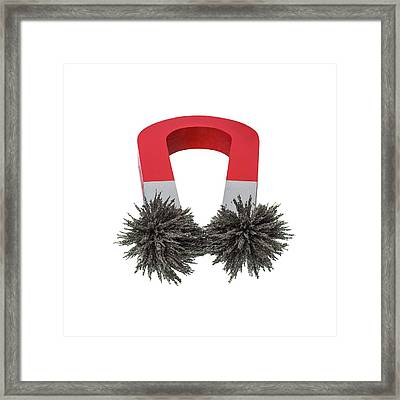 Iron Filings On A Horseshoe Magnet Framed Print by Science Photo Library