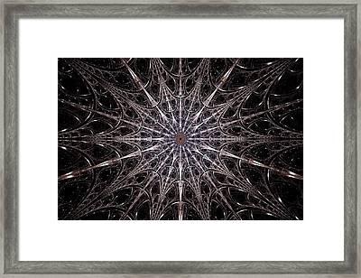 Iron Shield Framed Print