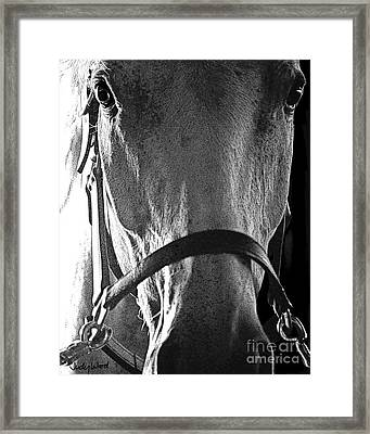 Ironside Framed Print by Judy Wood