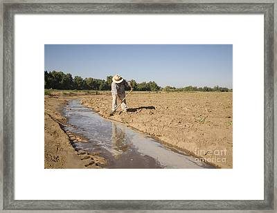 Irrigation In Arizona Desert Framed Print