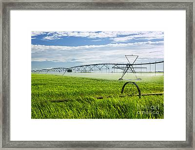 Irrigation On Saskatchewan Farm Framed Print by Elena Elisseeva