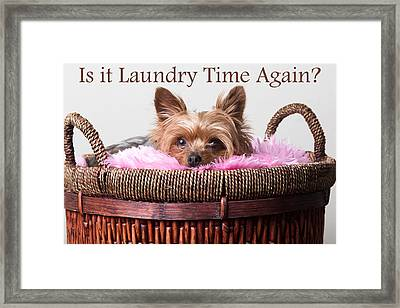 Is It Laundry Time Again? Framed Print by Purple Moon