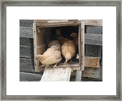 Is It Safe Out There Framed Print by Jenessa Rahn