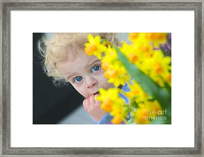 Is It Spring Yet Framed Print by Jay Nodianos