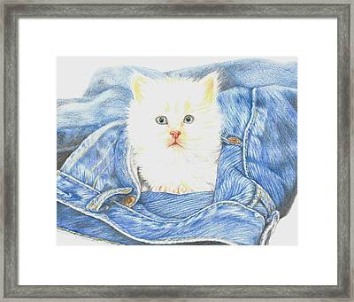 Is That A Kitten In Your Pocket? Framed Print