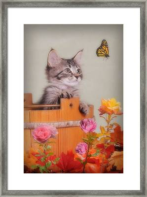 Is That Flower Flying? Framed Print by Kenny Francis