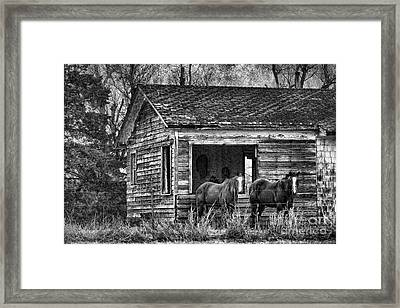 Is This Our Barn Framed Print by Betty LaRue