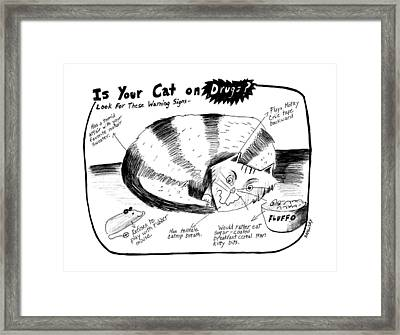 Is Your Cat On Drugs?  Look For These Warning Framed Print