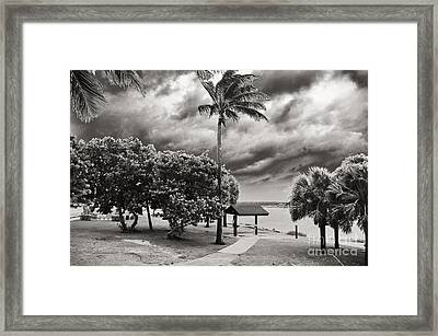 Isaac At The Inlet Framed Print