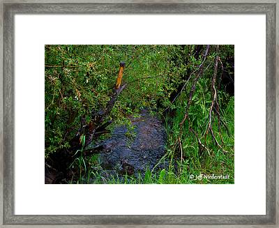 Isabel Creek Framed Print