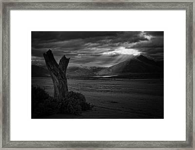 Isabella Storm Framed Print