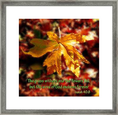 Isaiah Autumn Leaf Framed Print