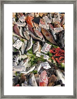 Ischia Fish Market Framed Print