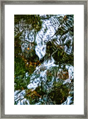 Isinglass Framed Print