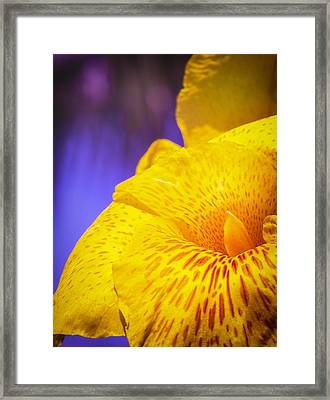 Island Beauty Framed Print by Maria Robinson