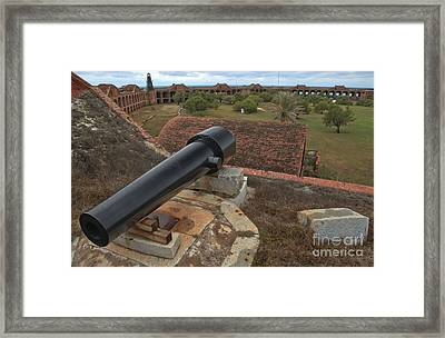 Island Defense Framed Print by Adam Jewell